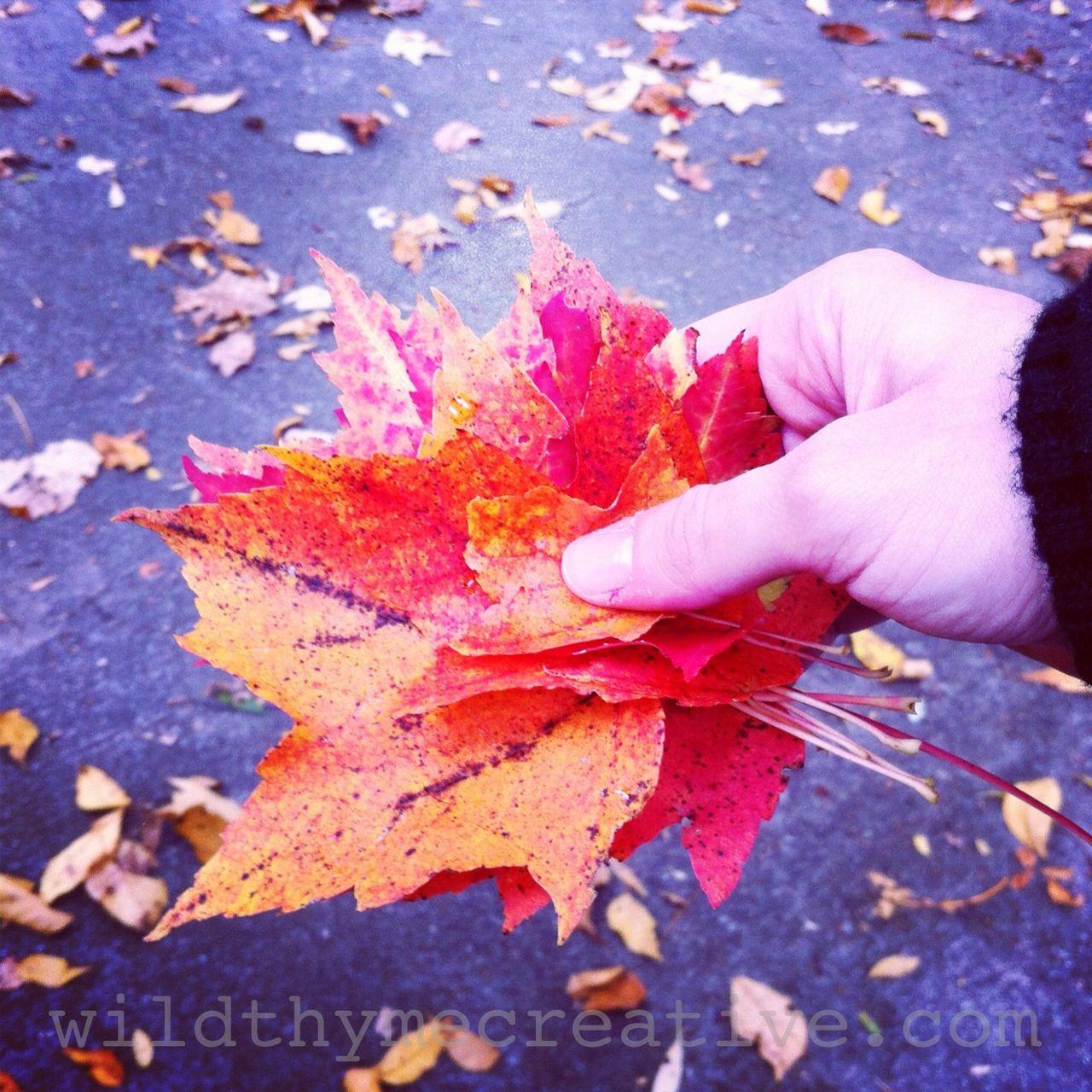 handful of October leaves